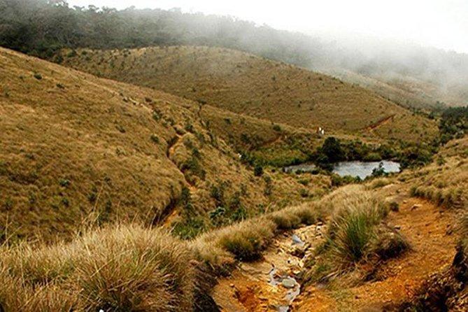Horton Plains-World's End Tour From Nuwaraeliya