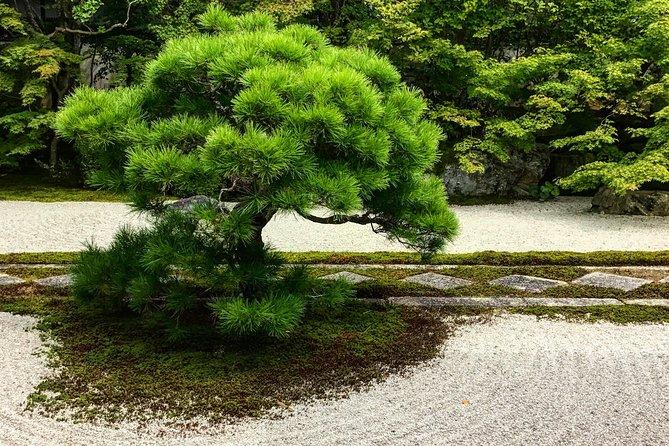 Kyoto: Zen Garden, Zen Mind (Small Group)