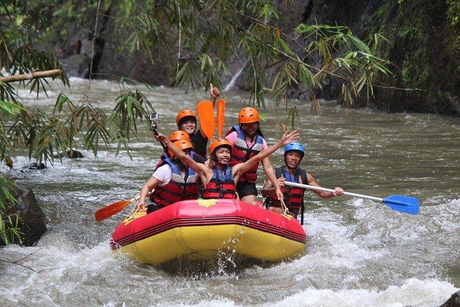 Ayung White Water Rafting