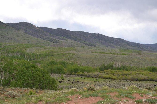Colorado Horseback Riding Tour, All-Levels