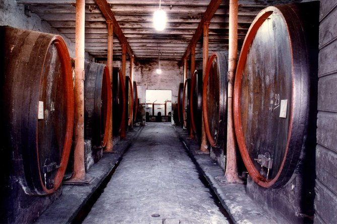 Wine Tasting and Cellar Tour in One of the Oldest Winery of Montefalco