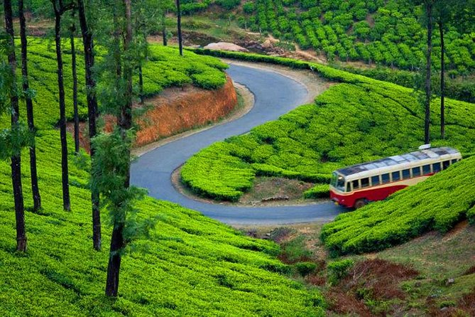 Private Luxury South India Munnar Aleppey Tour in 04 Days