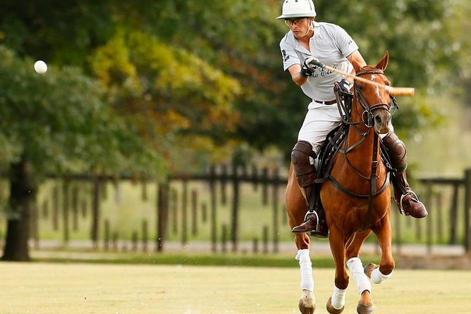 Polo Lessons from Buenos Aires by Polo Elite