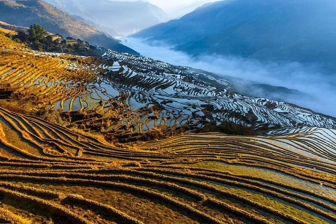 Private Rice Terrace and Minority Village Hiking from Longji to Pingan