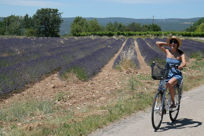 Luberon Electric Bike Rental from Bonnieux
