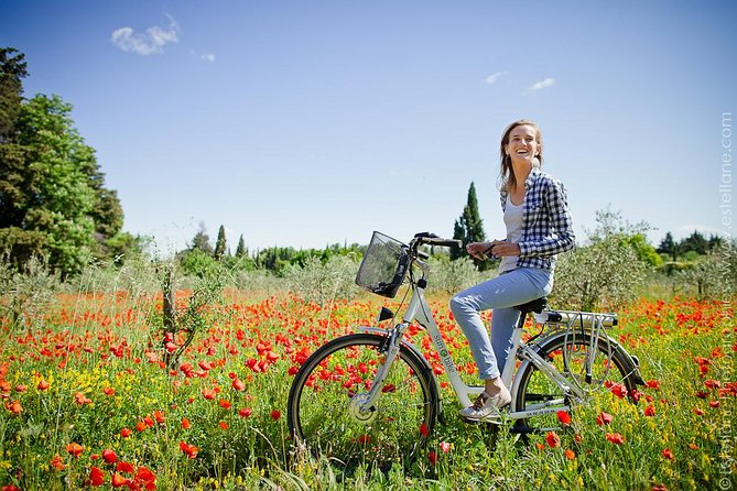 Half-Day Tour from St Rémy-de-Provence by Electric Bike