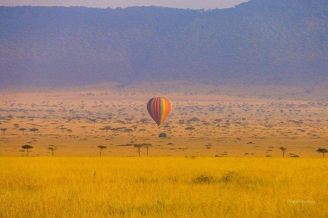Wildlife Safari In Tanzania