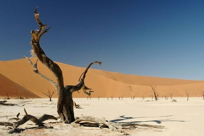 4-Day Sossusvlei and Swakopmund Camping Safari