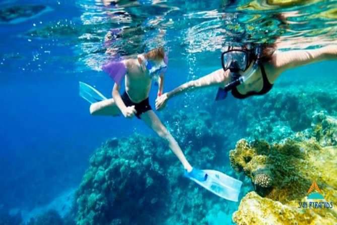 Snorkeling by Boat to Ras Mohamed from Sharm El Sheikh