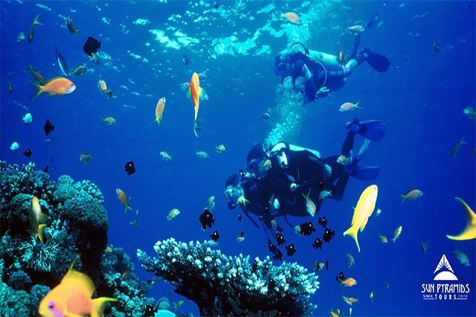 Snorkeling Trip at Hamata Islands From Marsa Alam photo 2