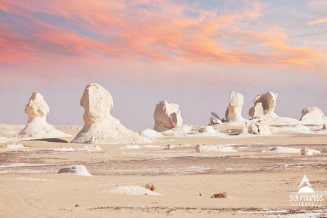 Day tour to White Desert and Bahariya Oasis Tour