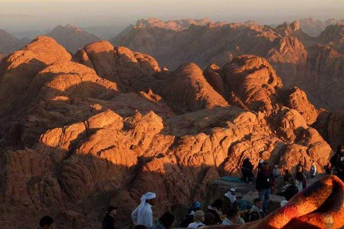 Tour Mount Sinai