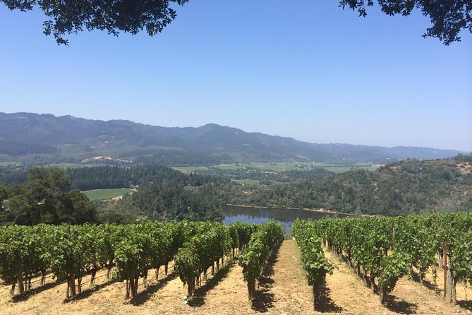 8-Hours Private Limo(up to 8 pass.) Wine Tour of Napa Valley from San Francisco
