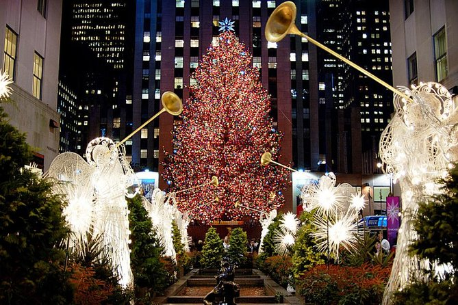 Dyker Heights Christmas Lights Luxury Bus Sightseeing Tour