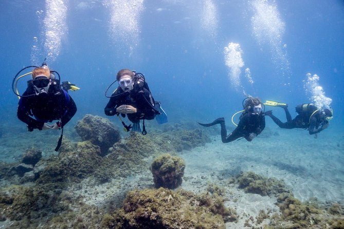 Discover Diving Experience
