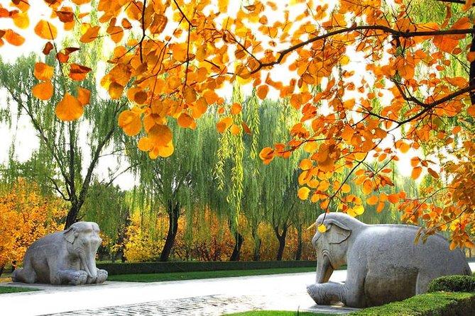 Privater Tagesausflug: Chinesische Mauer bei Mutianyu und Ming-Gräber
