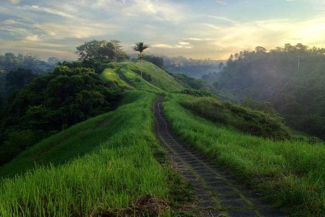 Private Tour: Ubud Rice Paddies Trek with Campuhan Ridge Walk