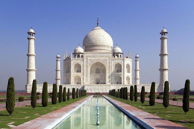 Solo traveler Taj Mahal trip only