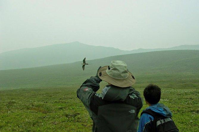 Private Multi-Day Denali Camping and Hiking Trip