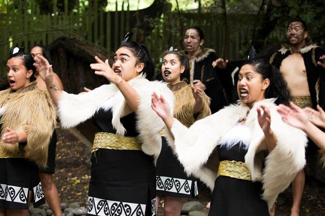 Maori Experience including Hangi Dinner and Guided Kiwi Tour