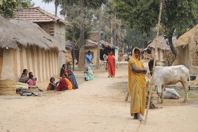 All Inclusive Tribal Village Walk with Visit to Taragram Project from Orchha