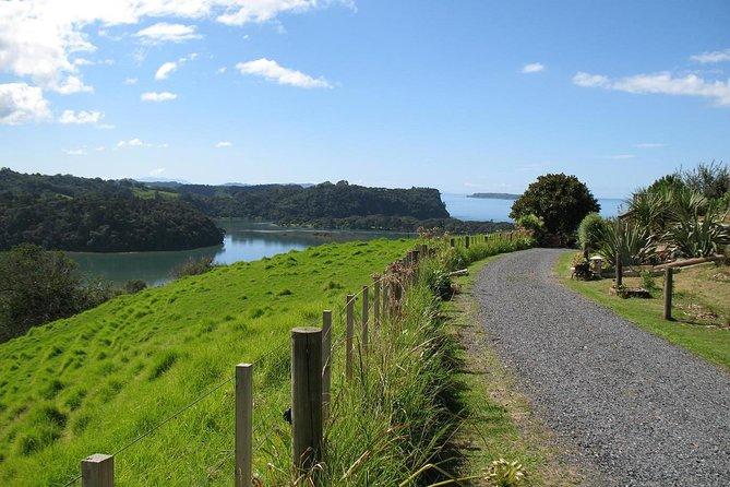 Matakana Coastal Getaway from Auckland