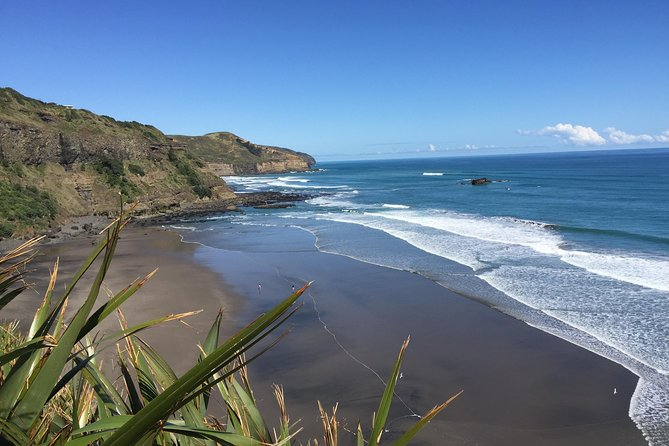 Muriwai Scenic Wine Tour from Auckland