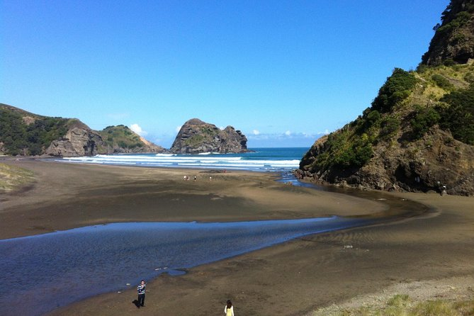 Piha og Karekare Rainforest Wine Tour fra Auckland