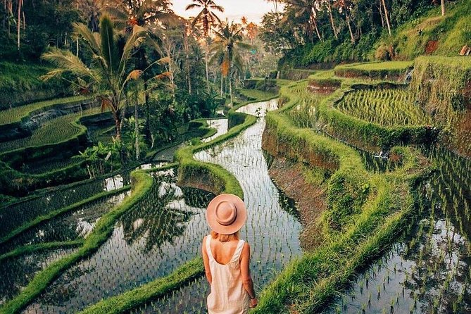Ubud Day Trip with Private & Friendly Driver