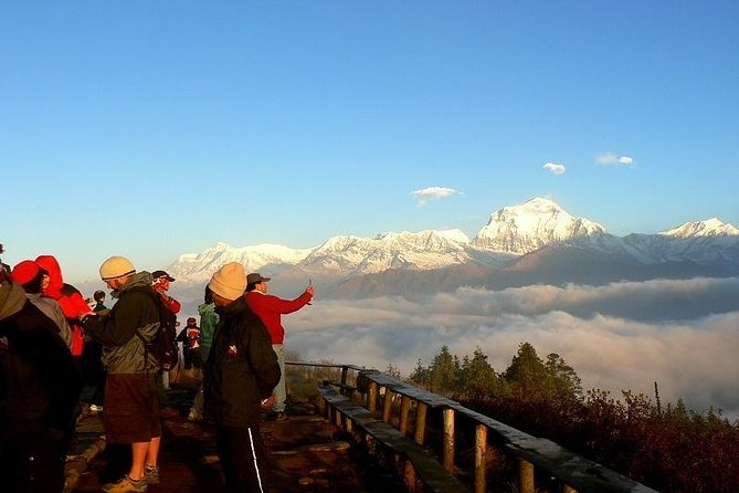 Ghorepani Poonhill Trek 5 Days from Pokhara