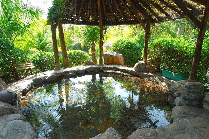 Xiamen Riyuegu Hot Spring Experience with Private Transfer