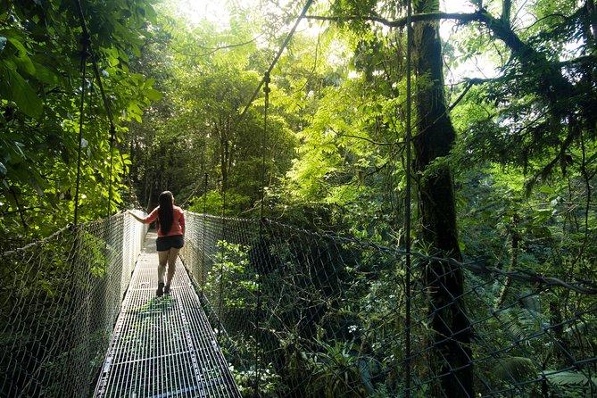 Arenal Hanging Bridges Hiking Private Tour