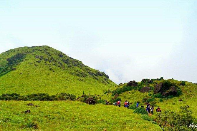 Trek to Tadiyandamol, Coorg