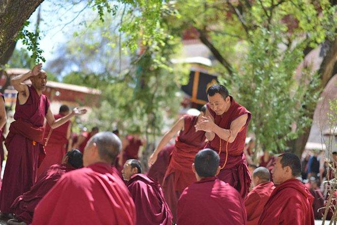 Day Tour: Tibet Drepung and Sera Monasteries