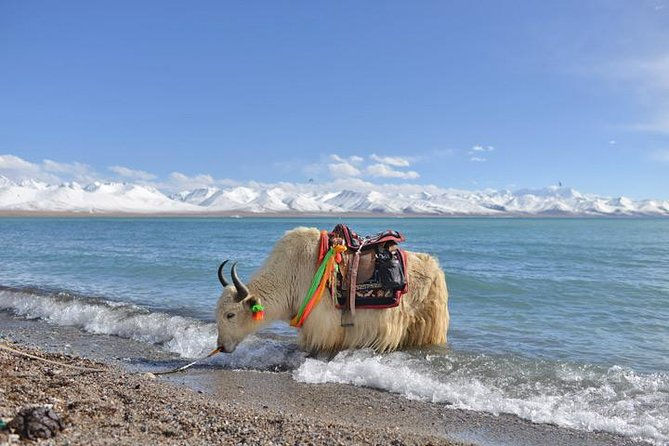 2-Day Lake Namtso Experience Small-Group Tour from Lhasa