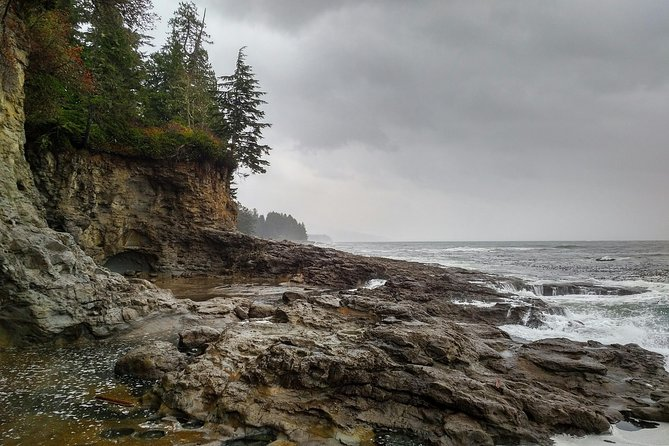 Discover Sooke to Port Renfrew Scenic Tour of Vancouver Islands