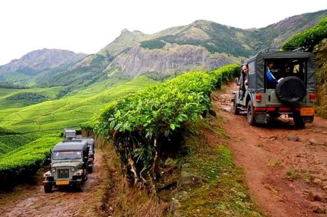 Kolukkumalai Jeep safari -tea trail and Orthodox Tea Factory visit -Private Tour