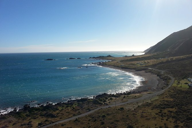 Cape Palliser Explorer Walking Tour