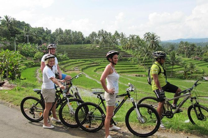 Bali Bike Ride Tour: Best Nature and Heritage