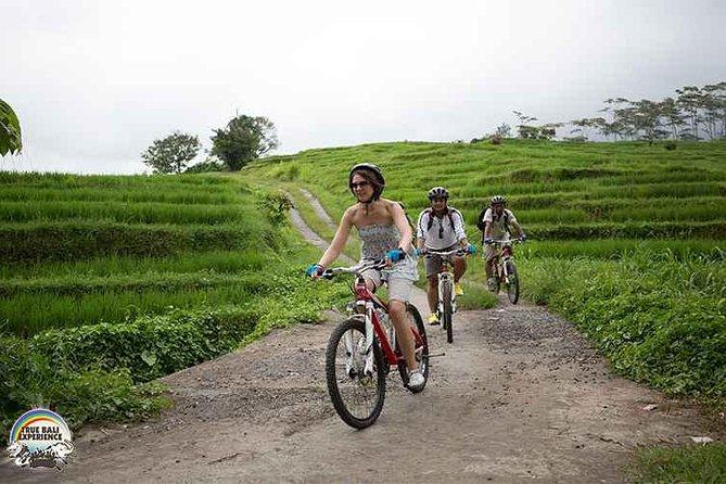 Tour en bicicleta