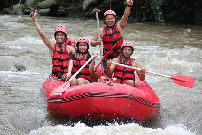 Bali Half-Day White Water Rafting Tour with Lunch, Transfers