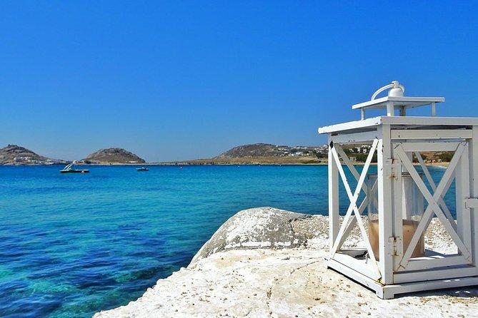 "Full Day Mykonos Mini Cruise ""Delos, Rhenia & The Beaches"