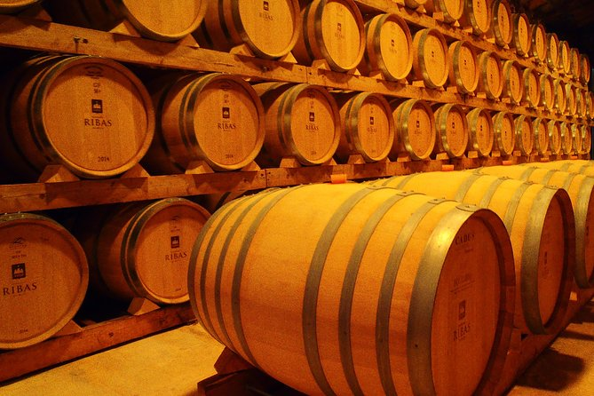 Winery Visit and Wine Tasting Tour: cruise travelers