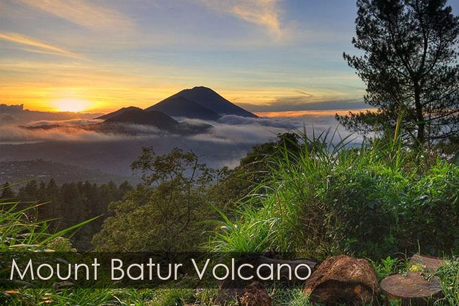 Bali Ubud and Volcano Day Tours