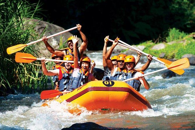Combination Bali Rafting including Ubud Tour
