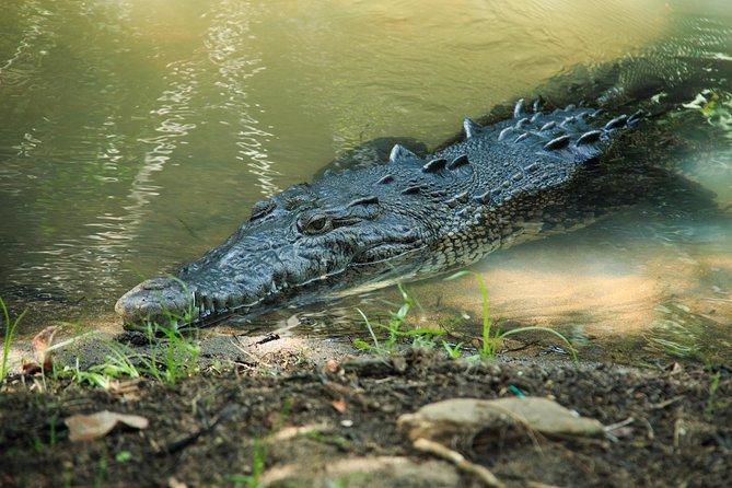 Puerto Angel Exotic Animal Wildlife Experience