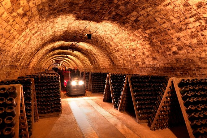 The Montserrat and Codorniu Wine Cellars Tour in Barcelona