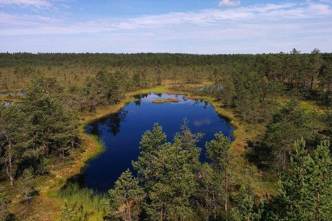 Lahemaa National Park Full Day Tour from Tallinn