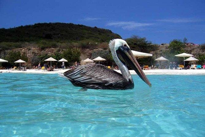 Visite privée des plages de Curaçao incluant Kenepa Beach