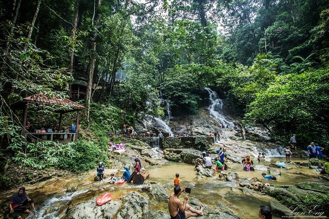 Batu Caves, Templers Park & Fireflies Tour with Lunch & Seafood Dinner (1 Day)